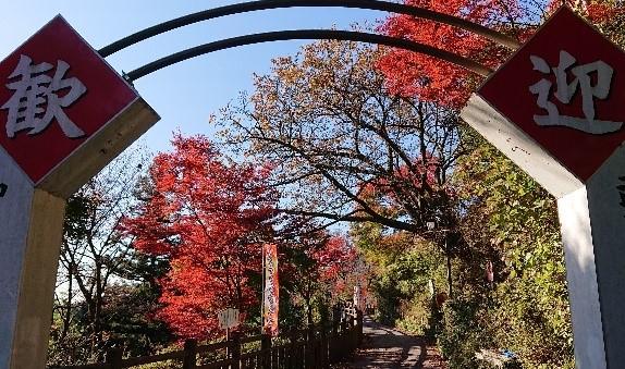 御岳山参道の様子11月5日撮影