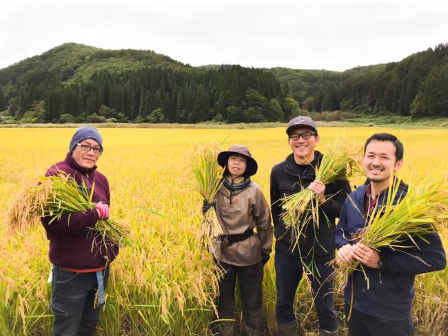 株式会社ベストシーン今年の稲刈り風景