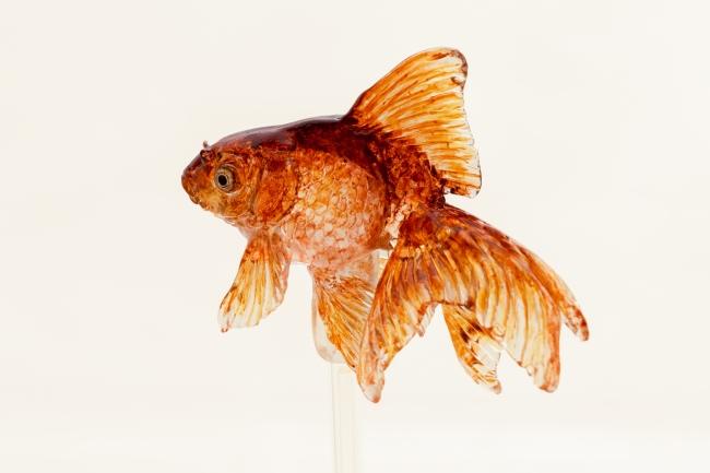 伝統的な飴細工の金魚