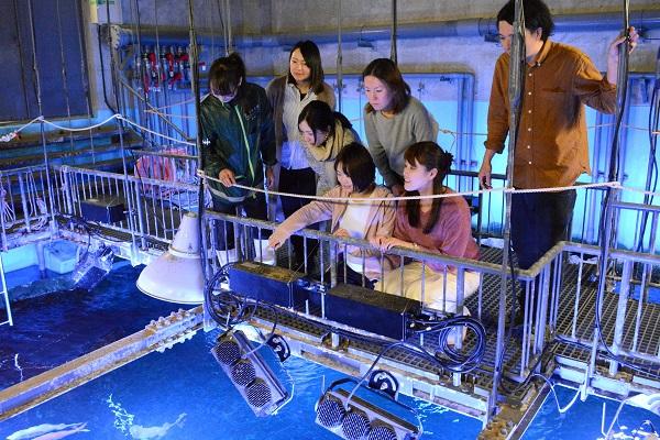 「京の海」大水槽の裏側を見学