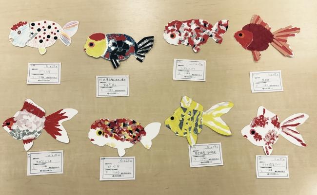 飼育スタッフが作成したオリジナル金魚