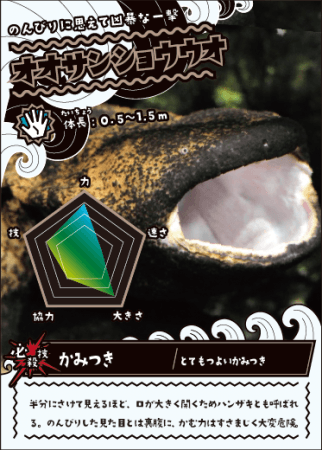 カード(イメージ)