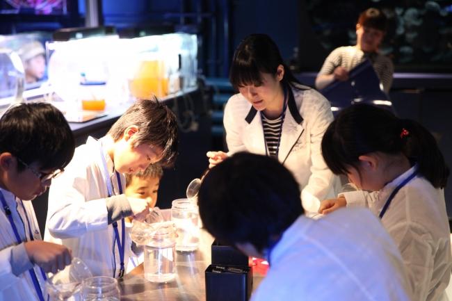 「クラゲ研究員」開催の様子