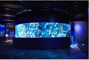 360度パノラマ水槽「GURURI」