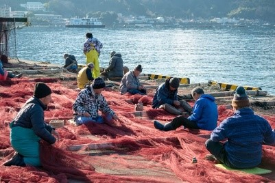 実際に巻網漁で使われている漁網