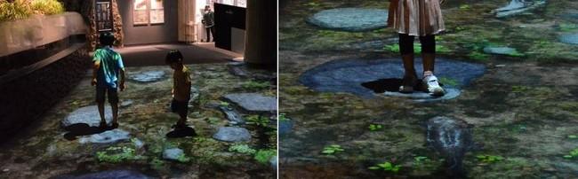 デジタル映像技術で演出された空間(イメージ)
