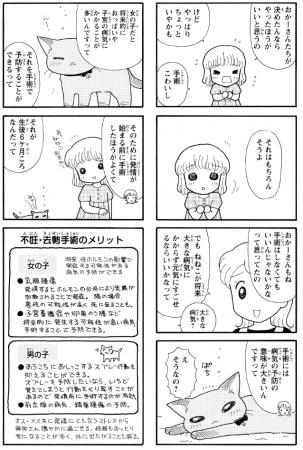 作画・すがわらめぐみ 監修・福島正則 「はじめての猫の飼育書」