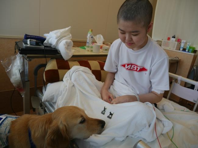 コロナ禍の中もファシリティドッグは変わらず病棟を訪問しています