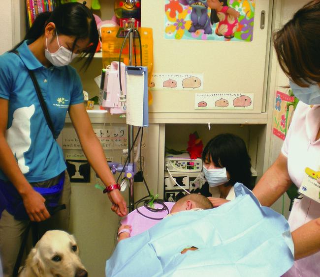 現役中、骨髄穿刺の付添い 静岡県立こども病院にて