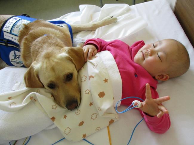 病棟のベッドにて、添い寝をする様子