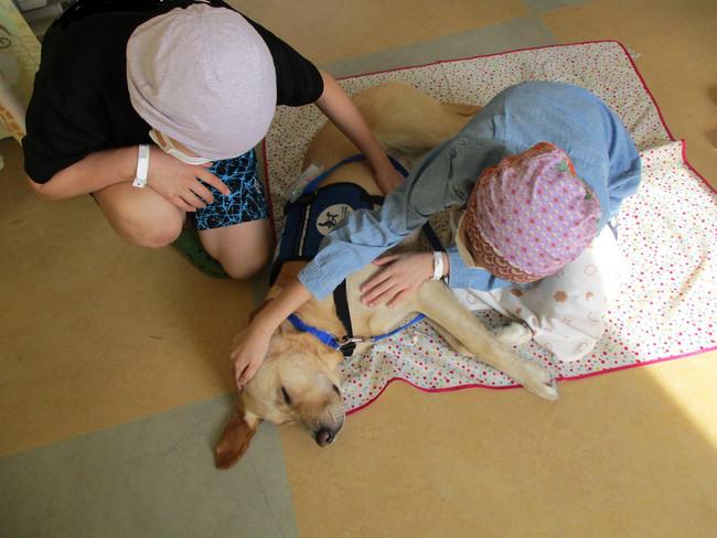 病棟の広場にて、子どもたちとのふれあいを楽しむアイビー