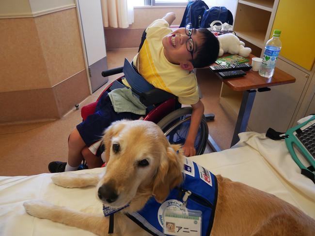 神奈川県立こども医療センターに勤務するファシリティドッグ・アニーと入院中のお子さん