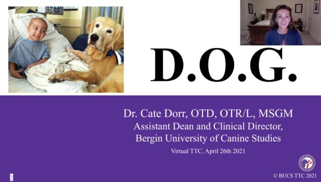 ケイト・ドール氏が座学講師を務めた様子。仔犬が生後わずか5.5週齢でも SIT(お座り) を学べるなど、実際の動画やエビデンスを交えながら、犬の発達・行動学をわかりやすく解説した