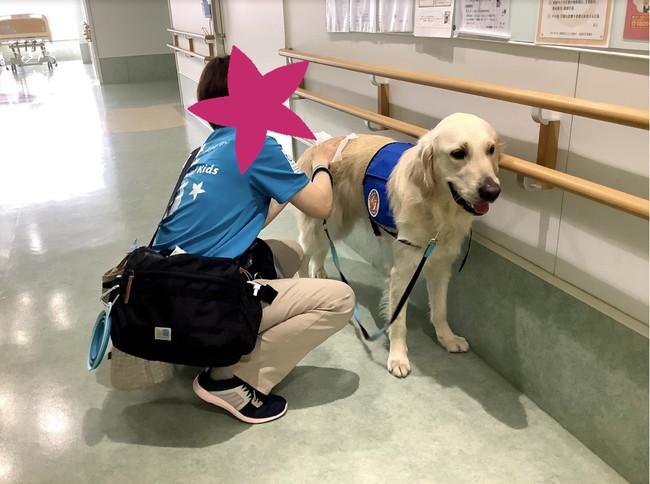 静岡県立こども病院内でハンドラーの適性試験を行う様子。病棟入る前の清拭手順、安全に配慮した歩行、患者対応は適切か、など約30項目を評価した。