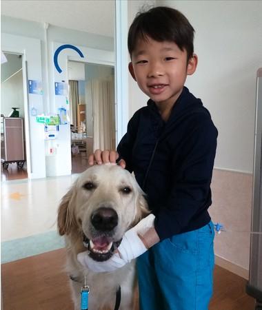 静岡県立こども病院で、後任犬タイと触れ合いを楽しむお子さん