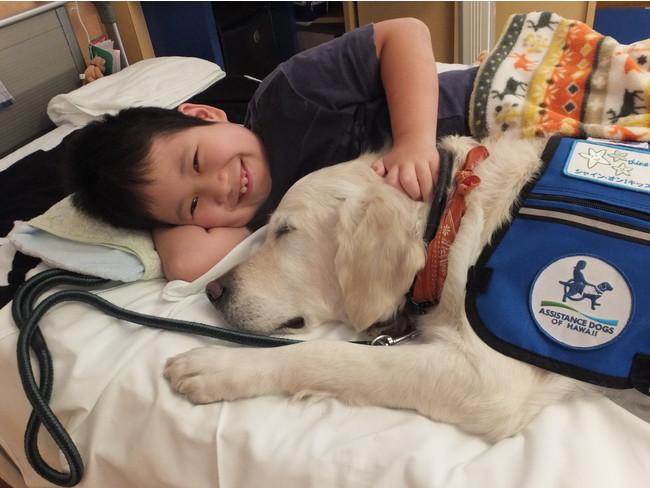 入院中の子どもに寄り添うファシリティドッグのベイリー(2016年撮影)