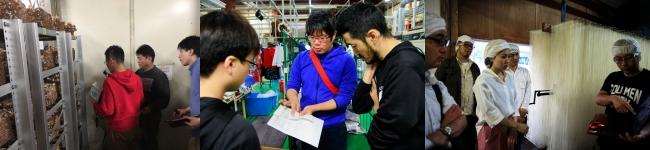 【フィールドワークの様子】左:しいたけ工場にセンサーを設置する参加者、中央:クリーニング店を視察する参加者、右:そうめん製造工場を視察する参加者