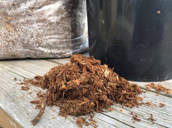 馬糞を堆肥化し、健康な野菜作りの可能性に挑戦をしている。