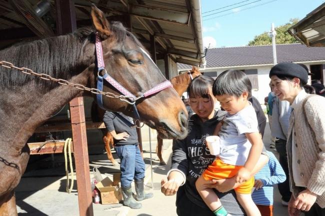 引退競走馬はホースセラピーとしても可能性を秘めている。