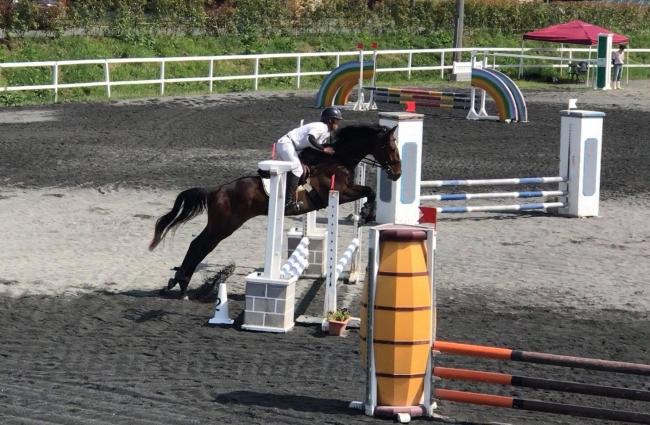 引退馬はリトレーニングされ、もう一度輝けるようリトレーニングを実施