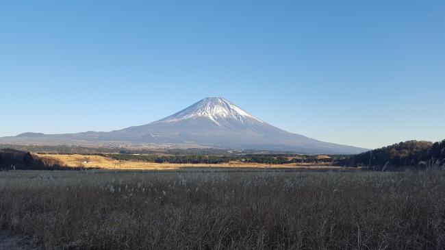The Caravan in 富士山麓の大草原 遮るものなく富士山が望める。