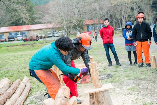 林業のプロによるチェーンソーエキシビションや、森の力をキーワードに木を使ったワークショップを開催。木を切り出すきこり体験もできる!