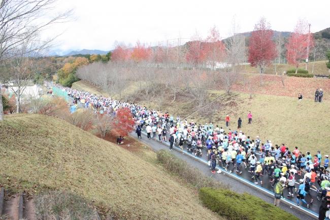 昨年の福知山マラソンのスタート直後の様子。約8,000人が参加