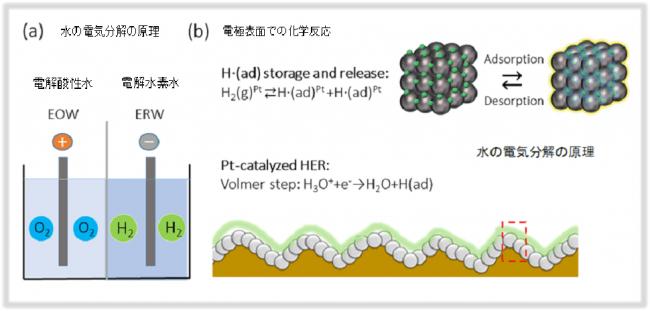 図2:白金ナノ粒子単層コート電極による電解水素水の生成