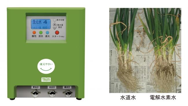 左:日本トリム制還元野菜整水器 右:青ネギ試験