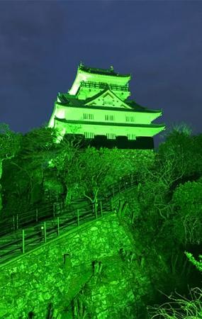 2019年世界緑内障週間に、グリーンにライトアップされた岐阜城