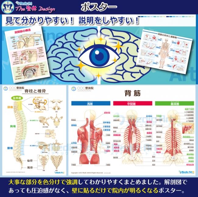 Medic Art 「The 整体 Design」のポスターの見本