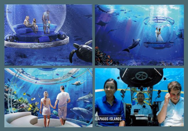 夢の潜⽔船「SEA BALLOON(海中バルーン)