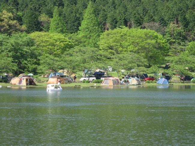 志高湖キャンプ場が隣接しており、フォレストアドベンチャーご利用後のキャンプやBBQも!