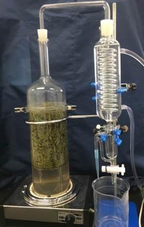 会場で蒸留して精油を作る
