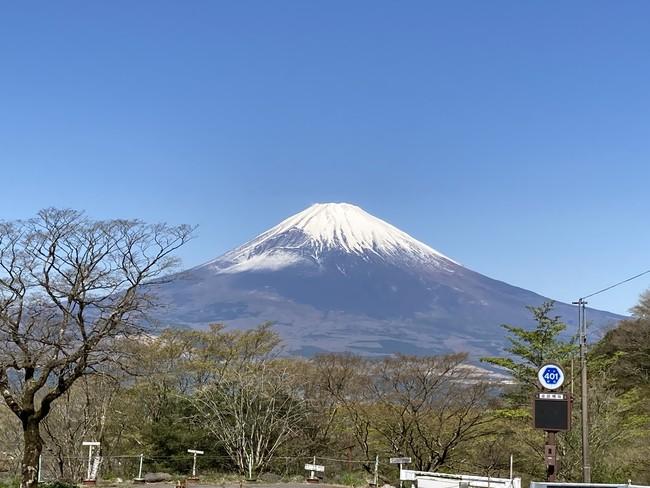 長尾峠から富士山を望む
