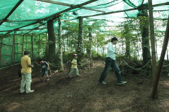 「カブトムシの森」特設ドーム内イメージ