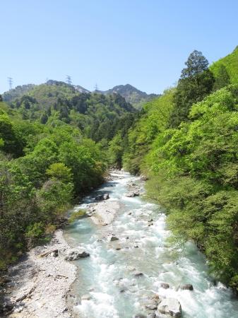 清津川の渓流