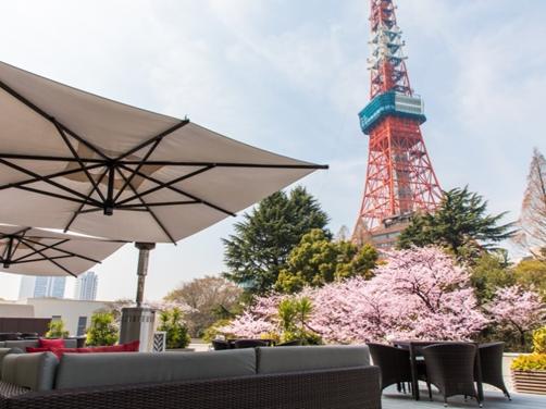 東京プリンスホテルから望む東京タワーと桜 イメージ