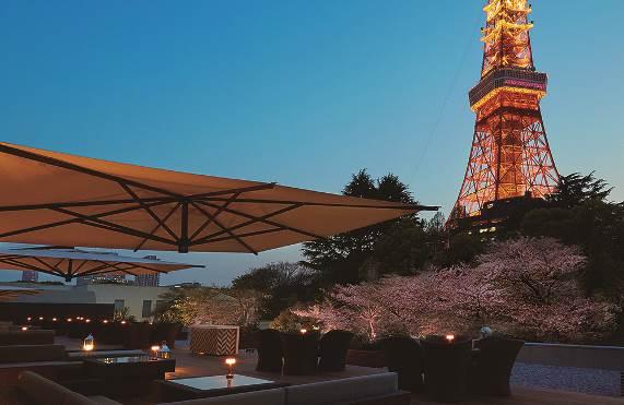 カフェ&バー タワービューテラスから見た夜桜 イメージ