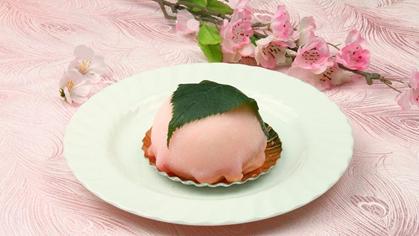 桜花~おうか~ イメージ