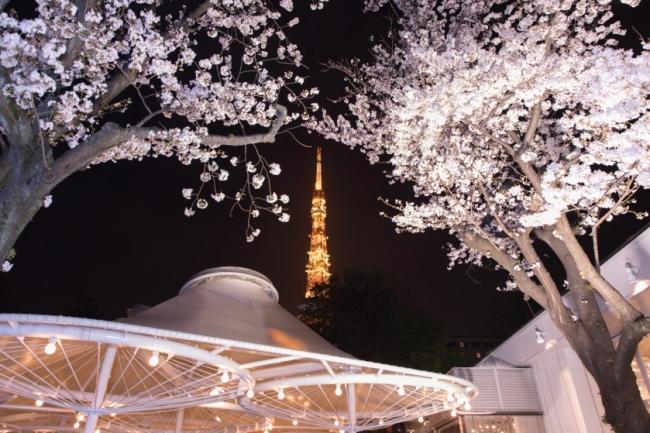 ビアレストラン ガーデンアイランドから望む夜桜 イメージ