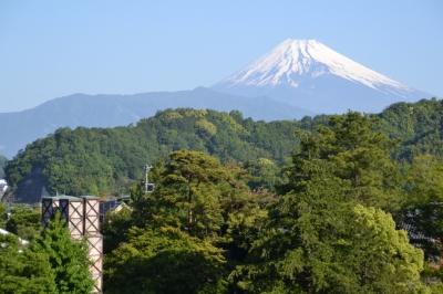 茶畑からの景色イメージ(二つの世界遺産)