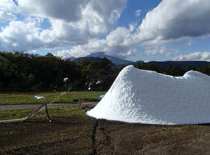 造雪作業の様子