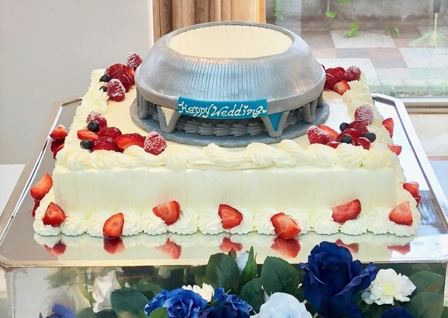 【有料オプション】ドーム型ケーキ イメージ