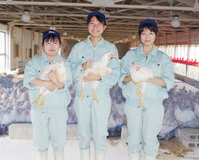 「但馬農業高校」(左から)岡 波瑠捺さん・山本 知佳さん・山室 万由子さん