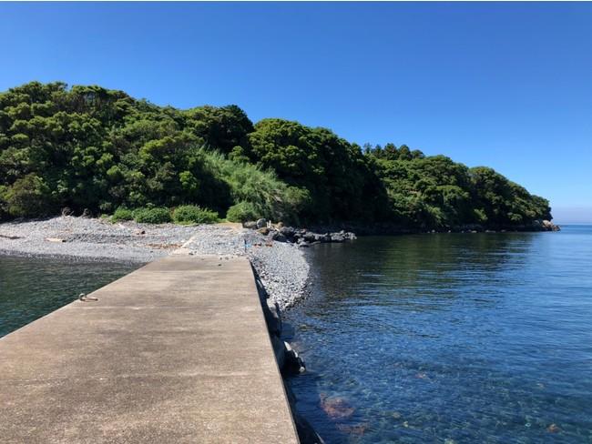 妻ヶ島へは桟橋から上陸します