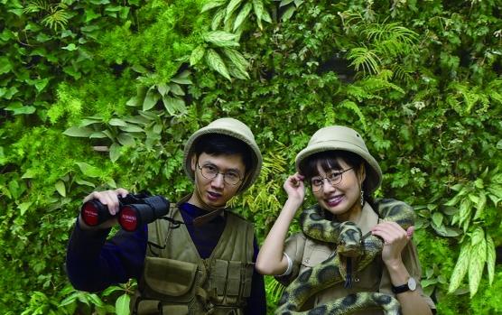 ジャングル フォトスポット