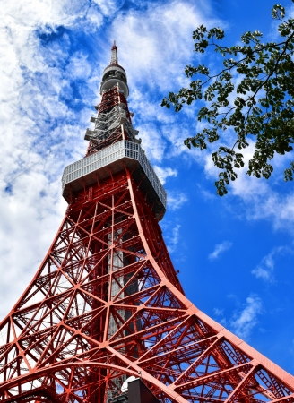間近に見える東京タワー
