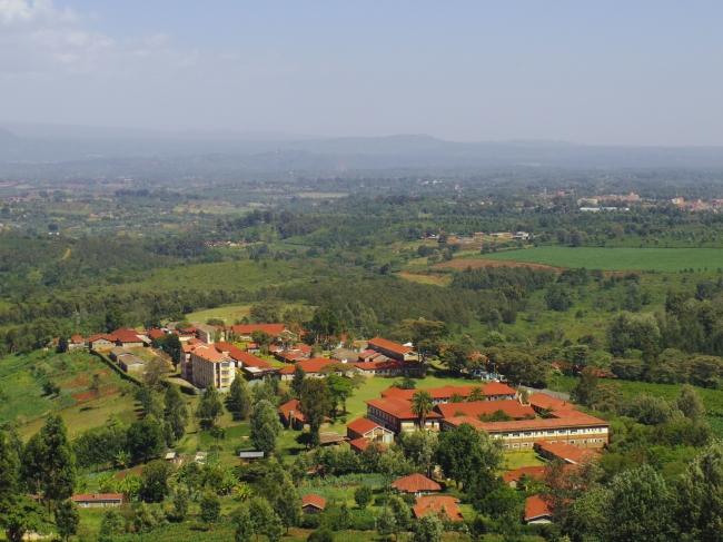 ニエリ・ヒル農園(ケニア)