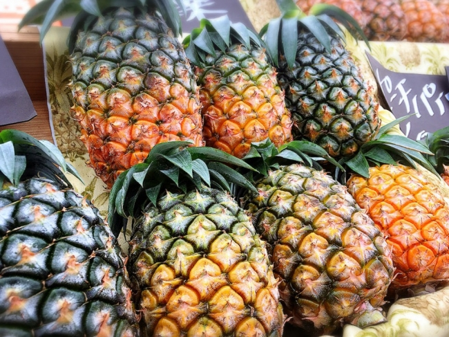 図4. 無農薬・減農薬パイナップル